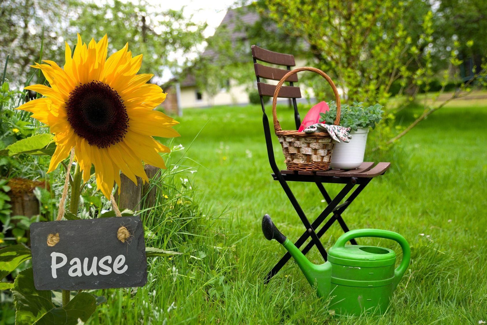 vacances pr parez votre jardin se passer de vous. Black Bedroom Furniture Sets. Home Design Ideas