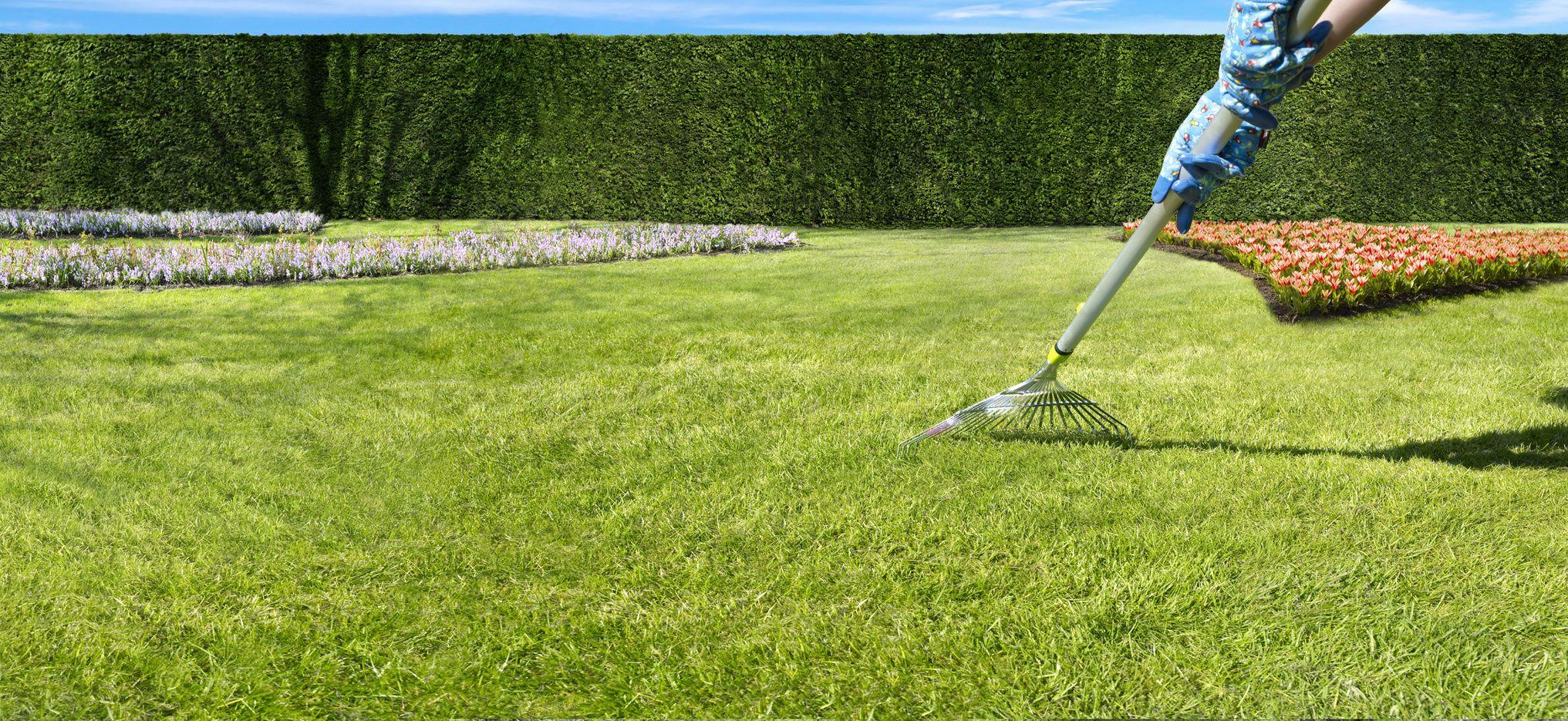 semer une pelouse au printemps