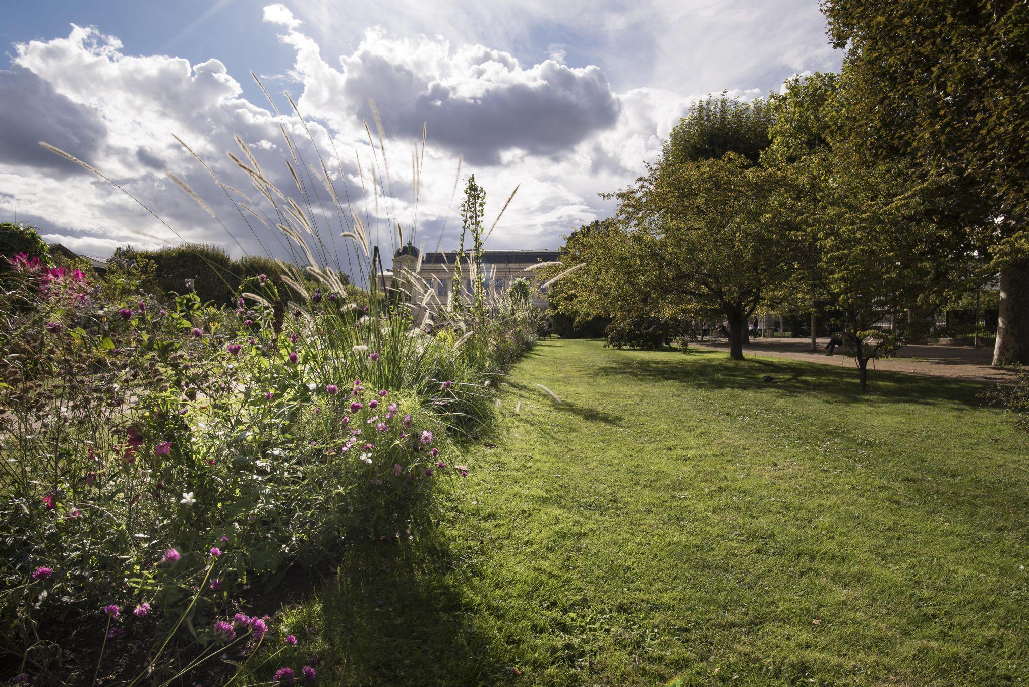 Le Jardin Des Plantes Une Fenetre Ouverte Sur La Biodiversite