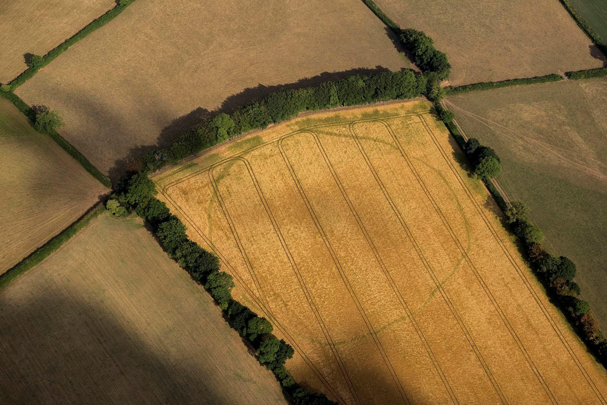 Agriculteurs en ligne datant du Royaume-Uni