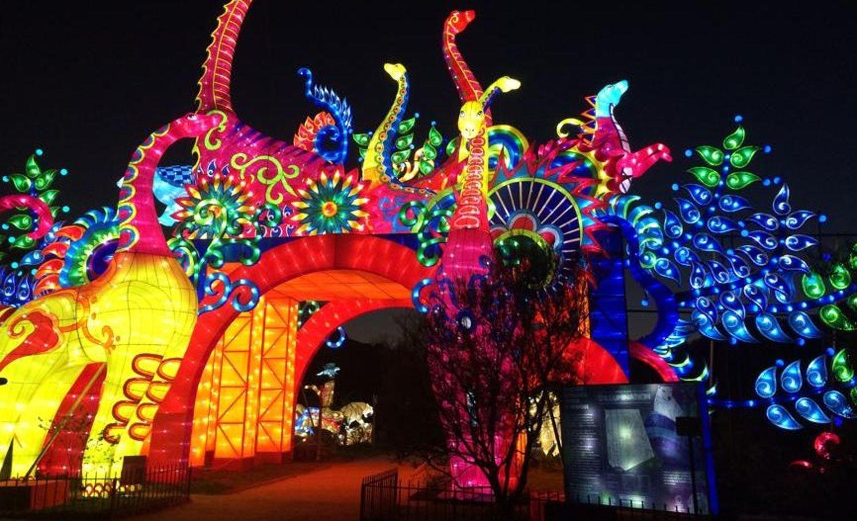 Des Animaux Fantastiques Illuminent Le Jardin Des Plantes A Paris