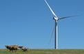 L'éolien perturbe le vote de la loi sur l'énergie