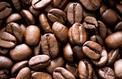 Café d'exception: la quête du grain