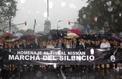 L'Argentine dans la rue contre sa présidente