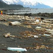 Les États-Unis s'attendent à recevoir les débris du tsunami japonais