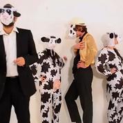 Les opposants à la ferme des 1000 vaches se mobilisent sur la Toile
