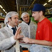 Sauvetage réussi de Gascogne, le papetier des Landes