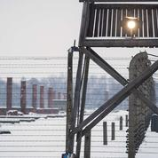 L'organisation industrielle de la mort dans le camp d'Auschwitz-Birkenau