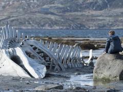 Leviathan, le monstre du cinéma aux Golden Globes