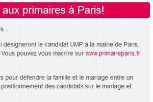 Capture d'écran du site de la Manif pour tous. Un lien permet d'accéder directement au site de la primaire de l'UMP.
