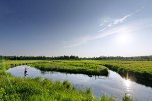 Le Mississippi rencontre son premier affluent, le Ducker Creek.