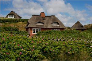 Les toits de chaume, la signature des maisons de Sylt.