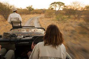 Sur la trace des lions avec Jacob et Xhega.