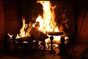 Pour corriger un sol trop acide, on peut y mélanger les cendres d'un feu de cheminée.