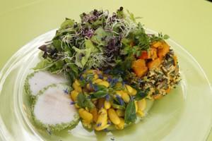 Assiette composée aux germes de blé chez Pousse Pousse.