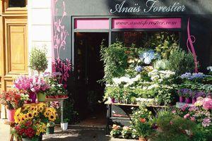 Fleurs Anaïs Forestier.