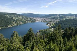 Lac et sapins à Gérardmer. (DR)