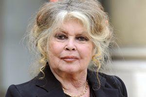 Brigitte Bardot fait partie des 15 personnalités âgées préférées des Français.