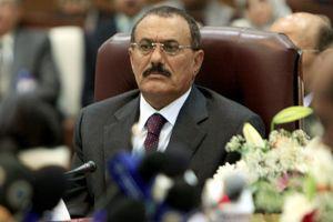 Ali Abdallah Saleh, en 2008.