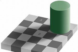 Illusion d'optique du damier d'Adelson: Dans cette image, le carré A est exactement de la même couleur que le carré B, mais le cerveau perçoit les deux images différemment.