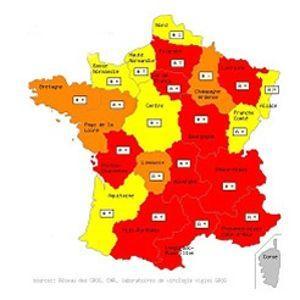 En rouge, les régions ayant atteint le niveau épidémique selon les GROG.