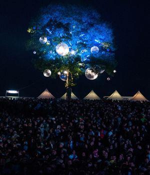 L'arbre aux festivaliers. (Crédits photo: NicoM18-55.org)