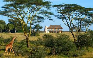 Kenya : un lodge au cœur de la savane