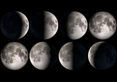 «Si la lune a une influence sur les plantes, elles est infinitésimale».