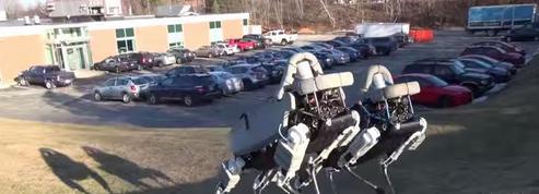 Spot, le surprenant chien robot de Google