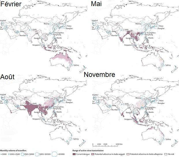 En rose foncé se trouvent les zones où le virus de la dengue est présent. En rose pâle, ce sont les zones où pourrait s'étendre Zika. Source: The Lancet Infectious Diseases