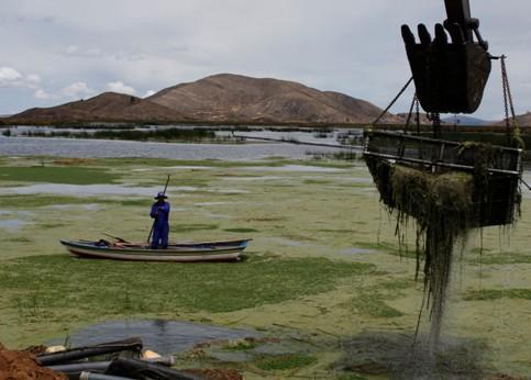 La baie polluée du Lac Titicaca à Pajchiri en Bolivie est nettoyée, le 19 novembre dernier. Les milliers de personnes vivant sur les bords de ce lac, le plus haut au monde, sont menacées par la pollution de ses eaux.