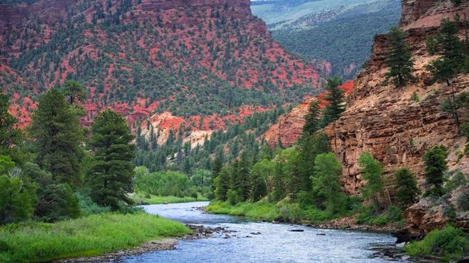 Le Colorado dévale les montagnes pour s'engager ensuite dans une série de canyons sauvages et verdoyants.