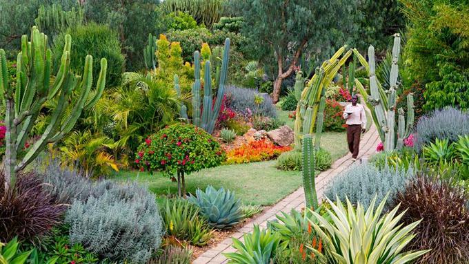 Le jardin de Segera est un véritable poème pictural dont on ne se lasse pas.