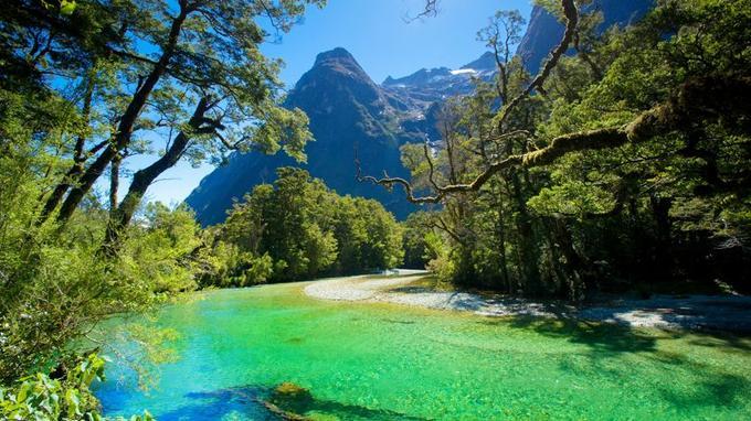 Les paysages du Fiordland évoquent la saga néo-zélandaise du «Seigneur des Anneaux» qui a été en partie tournée dans la région.