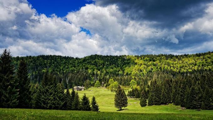 Carkova Uvala: 84 hectares de forêt primaire au sein du parc. L'espace protégé n'est pas accessible. C'est un vestige de la forêt qui recouvrait L'Europe au néolithique.