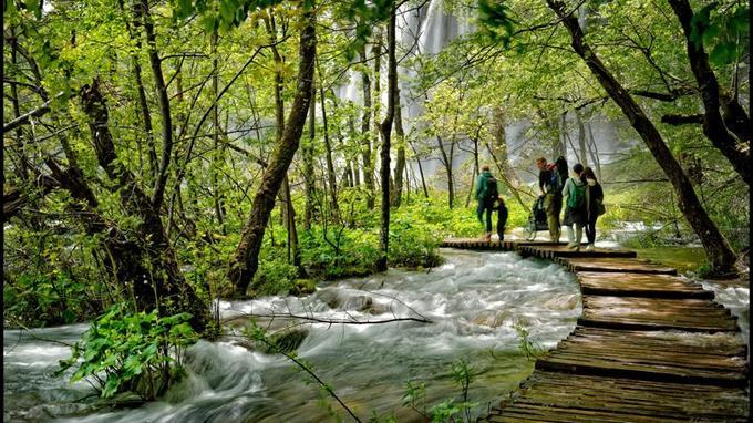 Le Parc national des lacs de Plitvice est constitué de 16 lacs, reliés entre eux par 92 cascades, ruisseaux et torrents. Des passerelles en noisetier permettent aux visiteurs d'en faire le tour en une journée.