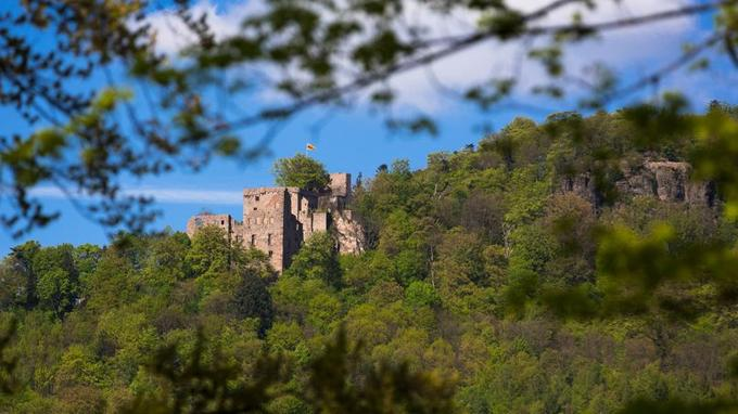 Dans une nature exceptionnelle, l'ancien château des margraves de Bade domine un paysage sauvage et sublime de forêts et de roches.