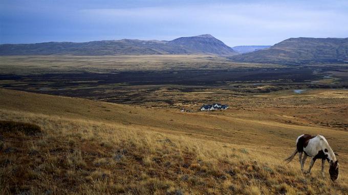 Un cheval criollo broute l'herbe rousse qui pousse malgré le vent et la sécheresse sur le flanc des collines. Plus bas dans la vallée, cette maison isolée est l'Eolo, un superbe Relais & Chateaux.