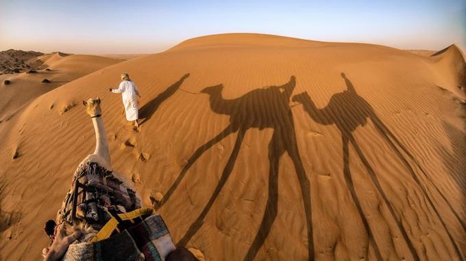 Méharée dans le désert des Wahiba. Les Bédouins habitent encore ce territoire parcouru de dunes de sable. Un monde du silence, seulement troublé par le son du vent.