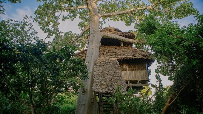 Des cabanes spacieuses déconnectées du monde moderne (Crédit: Chole Mjini)