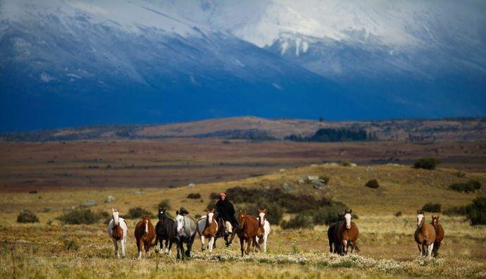 Nestas terras remotas, as tradições equestres têm sido transmitidas de pai para filho há mais de 400 anos.