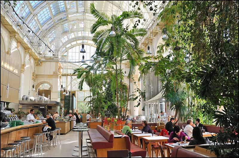 Jardin Dhiver Paris