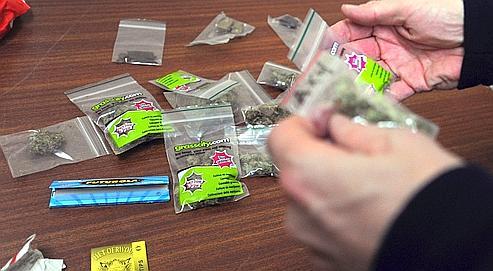 cannabis comment la police judiciaire mne la traque