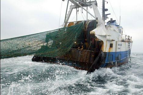 Fin des chaluts de fond dans le Pacifique sud