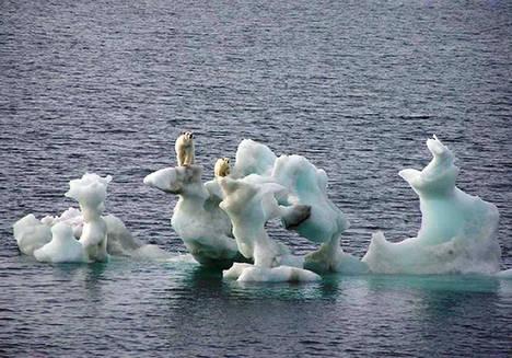 Les chercheurs voient l'arctique fondre à vue d'oeil