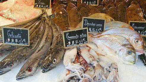 Des fonds seront débloqués pour financer «la sortie» de certains poissons. (Photo Martine Archambault/ Le Figaro)