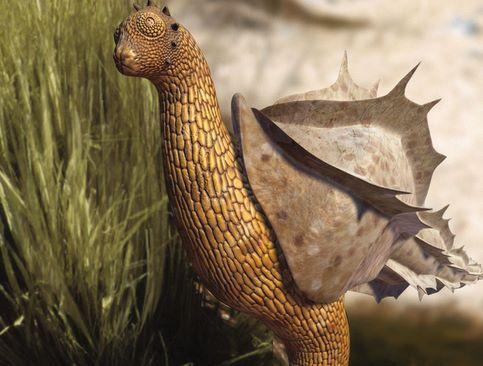 Parmi les plus étranges animaux du futur, ce suceur-sauteur. Notre escargot a grandi, et pour survivre au désert, il a cessé de baver pour sauter sur son unique pied.