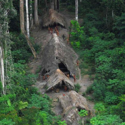 D'après les observations de la Funai, la taille de la tribu photographiée serait en augmentation. Mais elle souligne que d'autres groupes semblables sont menacés par l'orpaillage sauvage. Les chercheurs d'or n'ont cure des règles gouvernementales de protection des habitats de ces tribus. « Nous avons décidé de faire ce survol pour montrer leurs maisons, montrer qu'ils sont là, montrer qu'ils existent », expliquent la Funai.