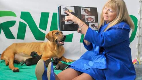 Le business des clones d'animaux domestiques est lancé 673df91a-6314-11dd-b5da-dc1332b78abe