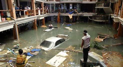 Une île de résidus du tsunami japonais dérive